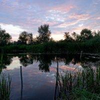вечернее небо :: Юлия Мошкова