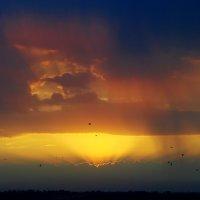 цвета неба :: Валерия Шамсутдинова