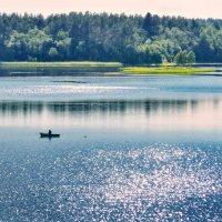 Летняя рыбалка :: Валерий Талашов
