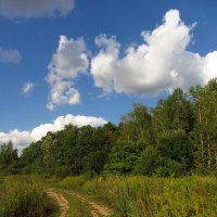 Вот моя деревня IMG_4967 :: Андрей Лукьянов