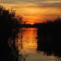 сентябрьский закат :: sergej-smv
