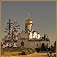 Богородице-Рождественский собор :: Дмитрий Анцыферов