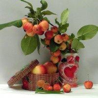 Натюрморт с яблочками. :: nadyasilyuk Вознюк
