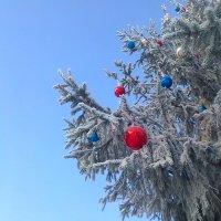 Новый год!!! :: Светлана