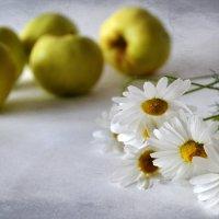 Ромашки и яблоки :: Галина Galyazlatotsvet