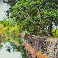 Где то на островах Тайланда :: Ксения Базарова