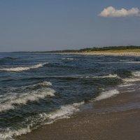 Балтийск. Пляж. :: Владимир Шутов