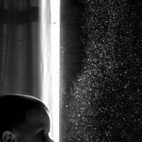 Звёзды :: Evgeny Shulin