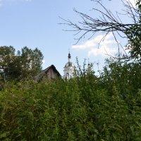 Сельский пейзаж. :: Oleg4618 Шутченко