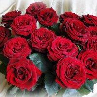 Букет из красных роз :: Елена Шемякина