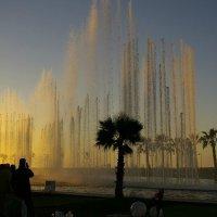 Танцующие фонтаны около Марокко Молла. :: Светлана marokkanka