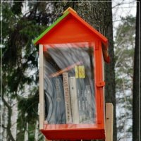 Мини-библиотека в парке :: muh5257