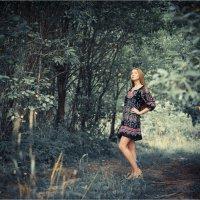 Сказочный лес :: Сергей Винтовкин