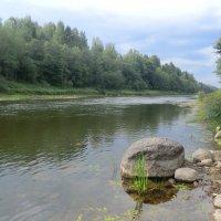 Река Западная Двина... :: Владимир Павлов