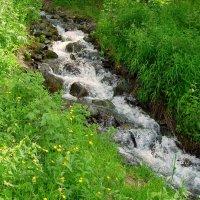Впечатления от Алтая.горная речушка :: Лидия (naum.lidiya)