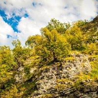 горы Геленджика :: Наталя Статкевич