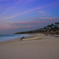 Ola, Dominicana! :: Антон Орловецкий