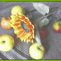 К яблочному спасу . :: Мила Бовкун