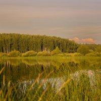 У озера :: Nika Dmitrieva