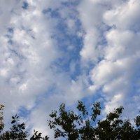 Чудесные облака! :: Валентина  Нефёдова