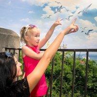 смотри, чайки :: Алена Малых