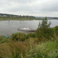 река Сухота :: Мила