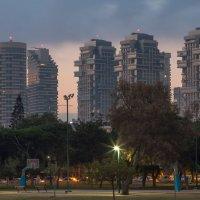 Доброе утро,Тель-Авив :: Павел Коротун