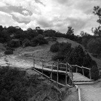 Каменистые тропы :: Александр Стоялов