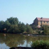Домик у озера :: Оля Ковалёва