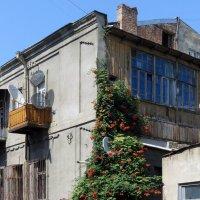 Уголок Тбилиси :: Наталья Джикидзе (Берёзина)