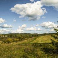 Сельский пейзаж :: Татьяна Белоусова