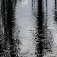 Дождь на озере :: Фёдор Соколов