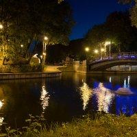 В ночном парке :: Олег Козлов