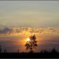 В лучах заката :: Ирина Голубева
