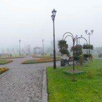 туман в маленьком парке :: Александр Таннагашев