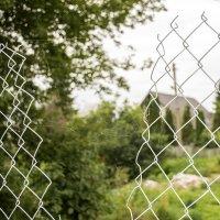Зачем сегодня ремонтировать забор, если завтра за тебя все сделает паучок) :: Богдан Петренко