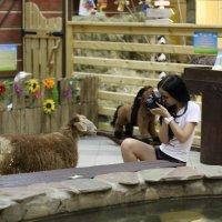 Бэк с моей съёмки в трогательном зоопарке) :: Кристина Бессонова