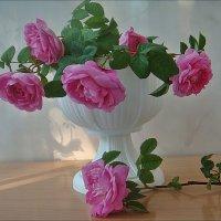 Розовые розы на моём столе... :: Нина Корешкова