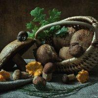 Белорусские грибочки :: Ирина Приходько