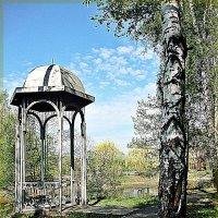 Беседка в парке :: Лидия (naum.lidiya)