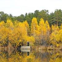 Осенняя рыбалка :: tankist Алексей