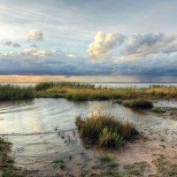 На заливе :: Сергей Григорьев