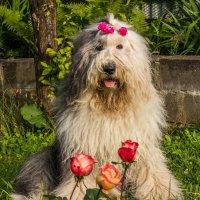 Мышка и цветочки :: Лариса Батурова