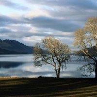 Вид на озеро Лох-Несс, Шотландия, Великобритания :: Арина Сивцева