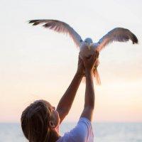 Лучше чайка в руках :: Valentina Zaytseva