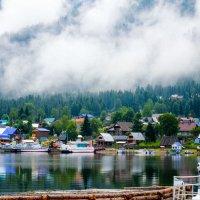 Северное побережье Телецкого озера :: Елена Решетникова