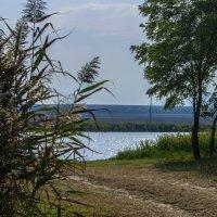 Соленое озеро :: ФотоЛюбка *