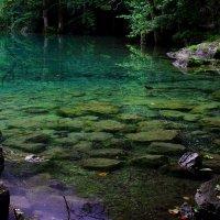 Изумрудная вода озера Кенигзее. :: Leo