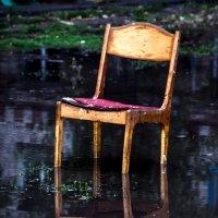 история одного стула :: Мария Данилейчук