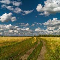 По дороге с облаками... :: Moloh.75 Евгений